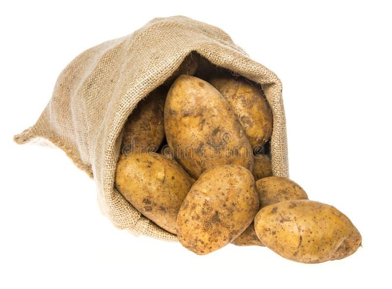 Свежие сырцовые картошки в мешке стоковая фотография