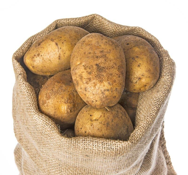 Свежие сырцовые картошки в мешке стоковые фото