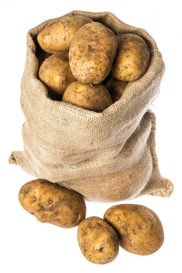 Свежие сырцовые картошки в мешке стоковое изображение rf
