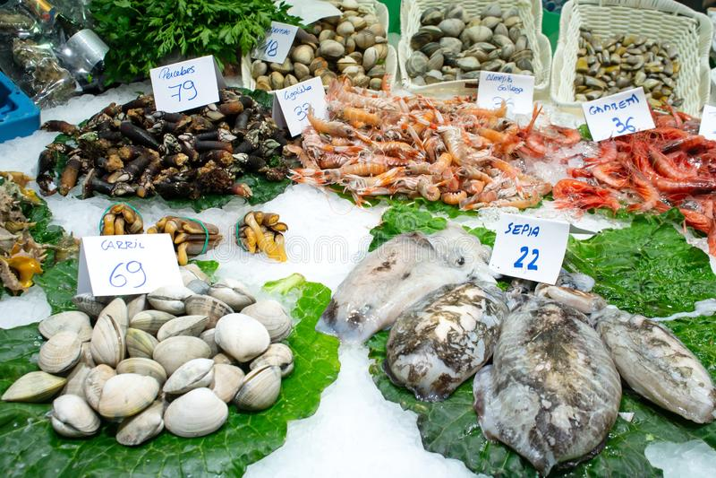 Свежие сырцовые морепродукты и моллюск на зеленых листьях и льде с ярлыками цены проданными на рыбном базаре в Барселоне Креветки стоковое фото rf