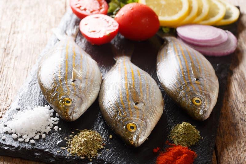 Свежие сырцовые сырцовые рыбы salpa sarpa с лимоном, овощами и крупным планом специй на доске шифера E стоковые фотографии rf