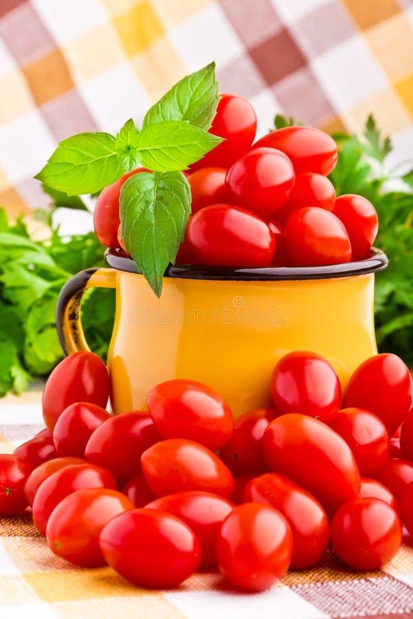 Свежие томаты вишни стоковое изображение