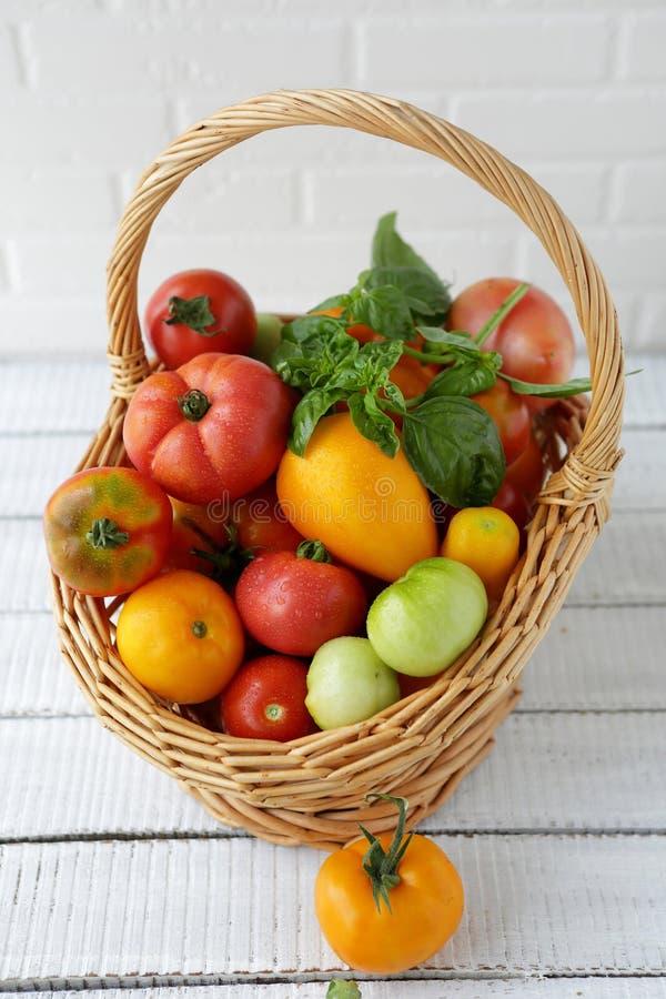 Свежие томаты в большой корзине стоковые изображения