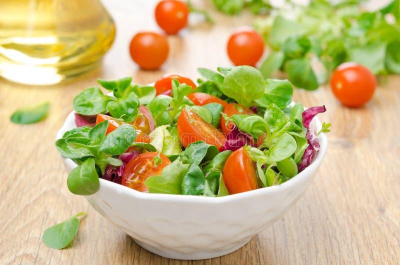 Свежие томаты в шаре, оливковое масло салата и вишни стоковые изображения rf