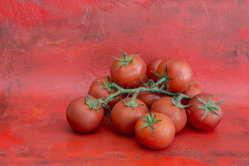 Свежие томаты на красной предпосылке стоковая фотография