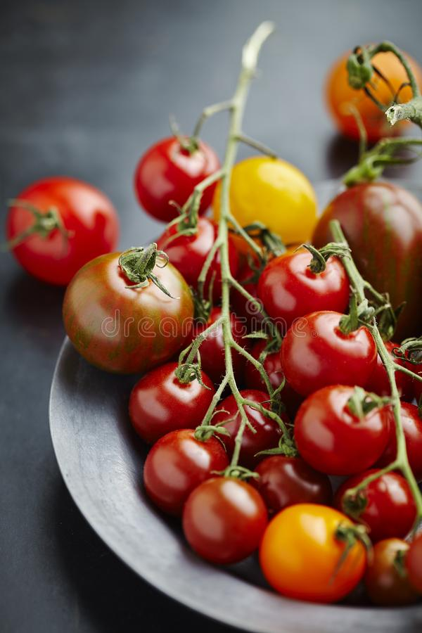 Свежие томаты на лозе стоковые фото