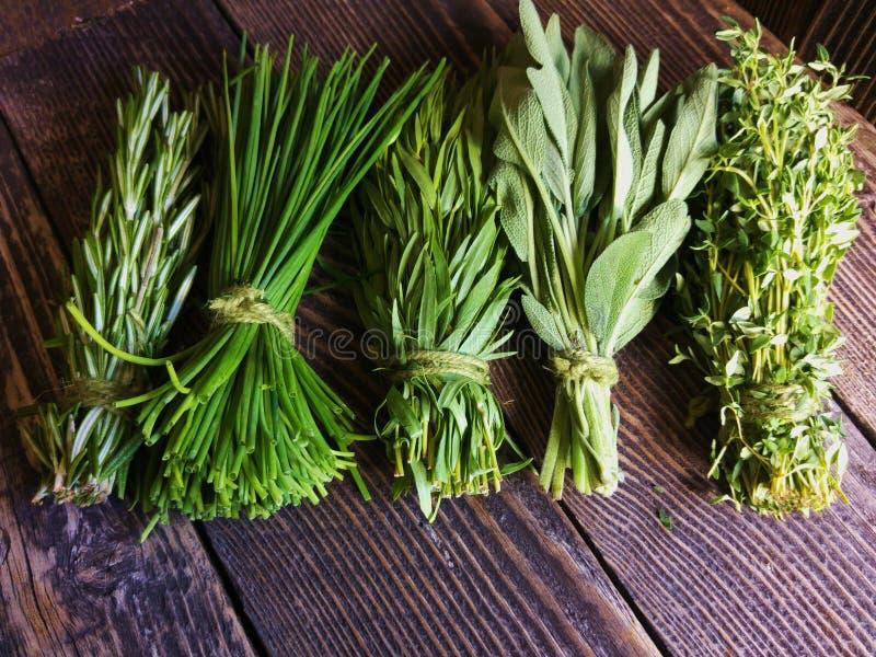 свежие травы стоковое изображение