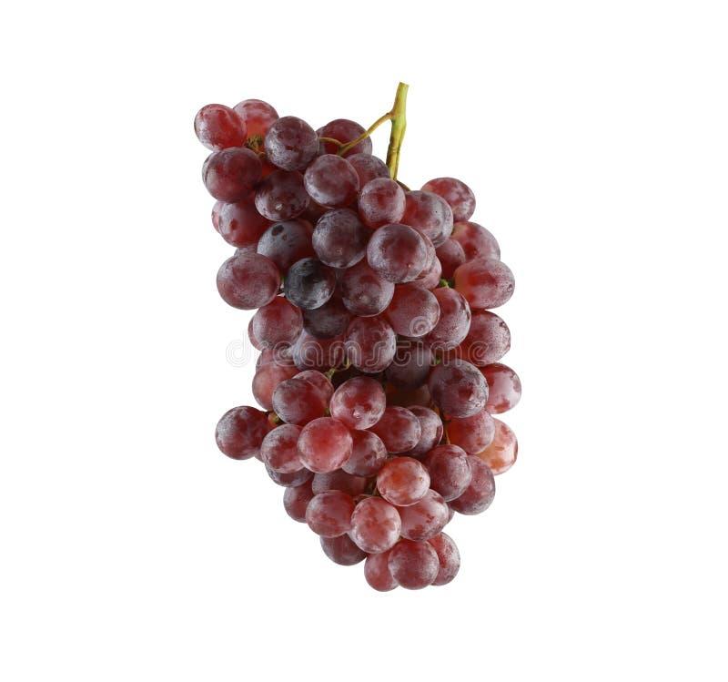 Свежие фиолетовые виноградины изолированные на белой предпосылке стоковые изображения rf