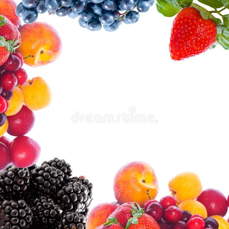 свежие фрукты вкусные стоковое изображение