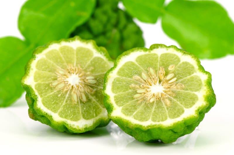 Свежие фрукты и зеленые листья известки Kiffir или известки пиявки на Wh стоковое изображение