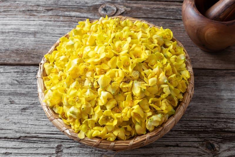 Свежие цветки mullein в корзине стоковые фотографии rf