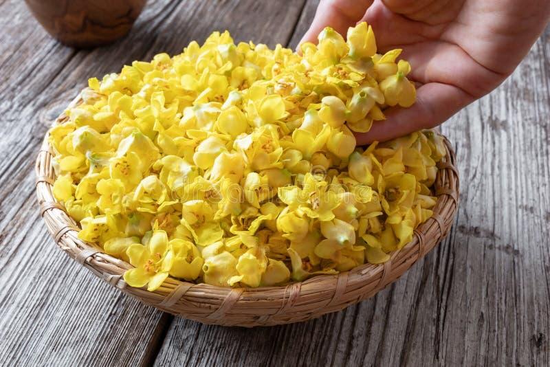 Свежие цветки mullein в плетеной корзине стоковое фото rf