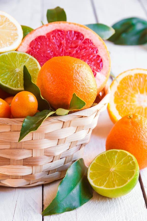 Свежие цитрусовые фрукты апельсин, лимон, грейпфрут, мандарин, известка с листьями стоковые изображения rf