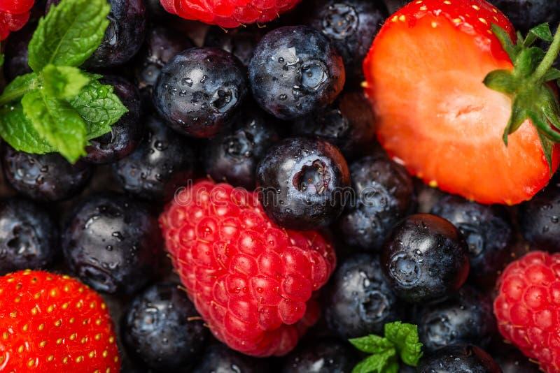 Свежие ягоды лета как голубики, клубники, поленики стоковые фото