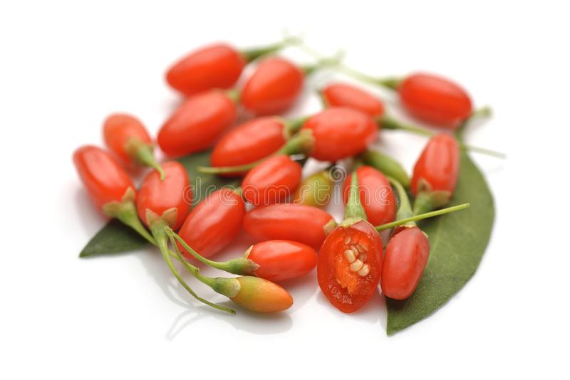 Свежие ягоды goji стоковые фото