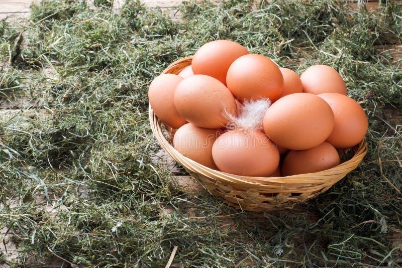 Свежие яйца цыпленка в корзине на соломе на ферме Деревенский тип стоковые фотографии rf