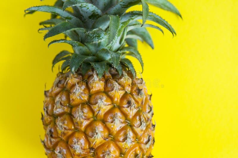 Свежий ананас на предпосылке стоковое фото rf