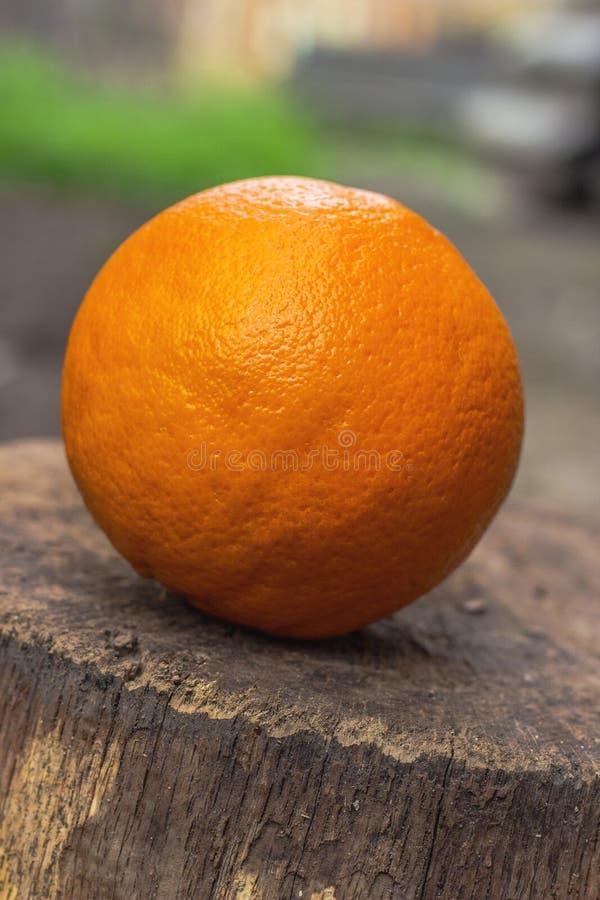 Свежий апельсин стоковые фото