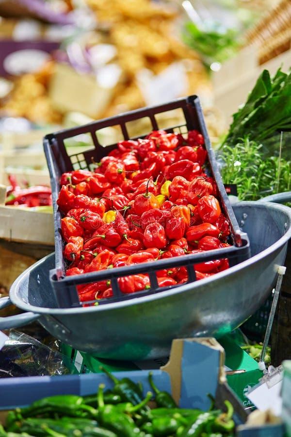 Свежий био перец на рынке фермера Лондона стоковое изображение rf