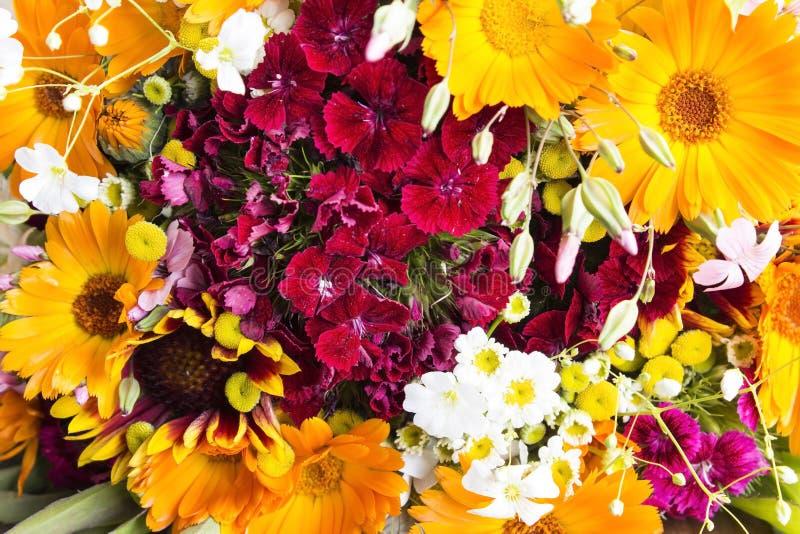 Свежий букет весны цветет как предпосылка стоковые изображения rf