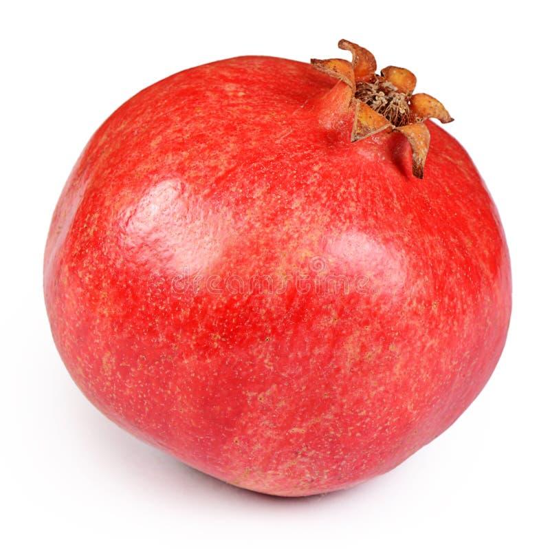 свежий вектор pomegranate иллюстрации стоковое фото rf