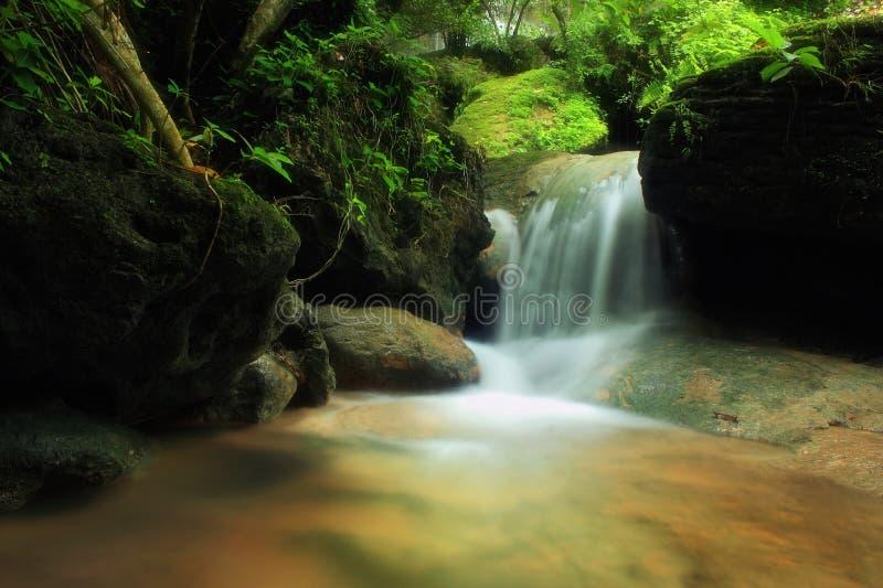 Свежий водопад стоковые фотографии rf