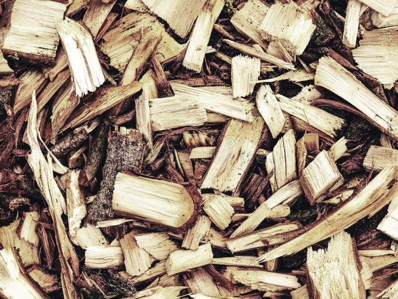 Свежий деревянный mulch обломоков Отброс опилк в лесе стоковые изображения