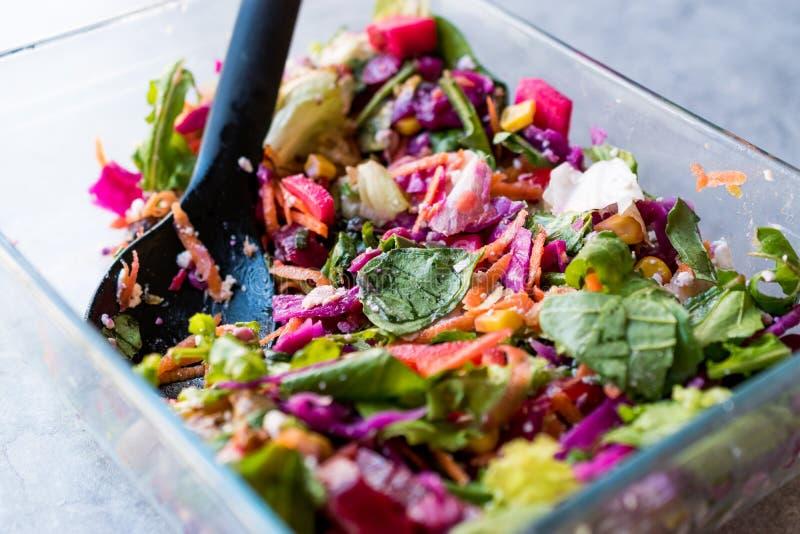 Свежий домодельный красочный салат с фиолетовыми капустой, свеклой, морковью и Ракетой стоковое фото rf