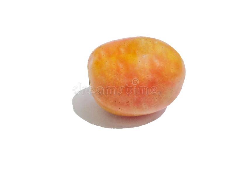 Свежий естественный томат изолированный на белой предпосылке стоковая фотография rf
