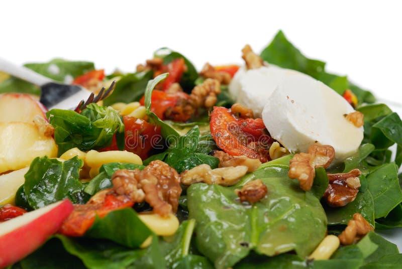 свежий здоровый салат стоковая фотография