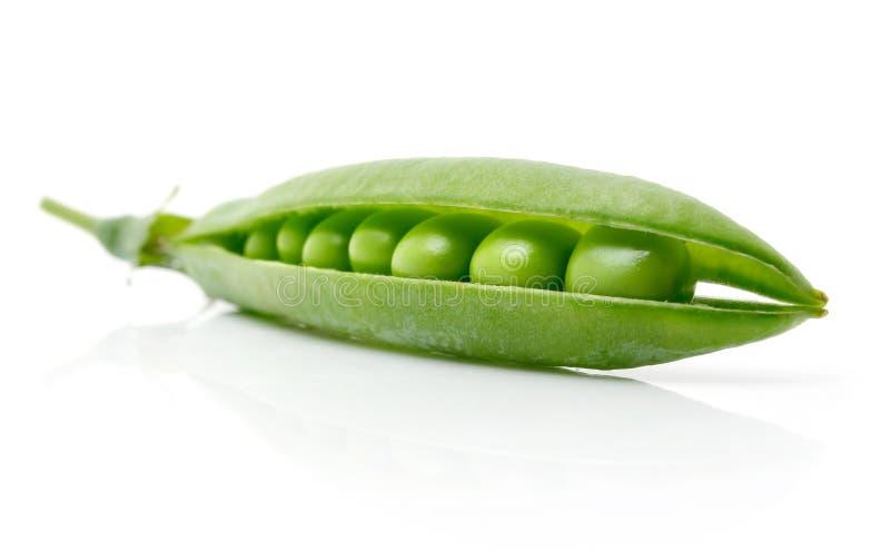 свежий зеленый изолированный стручок гороха стоковая фотография rf