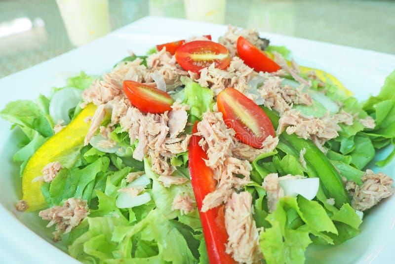 Свежий зеленый салат тунца овоща стоковые фотографии rf