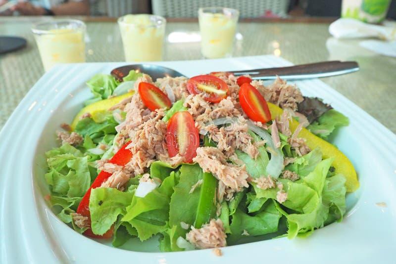 Свежий зеленый салат тунца овоща стоковое изображение rf