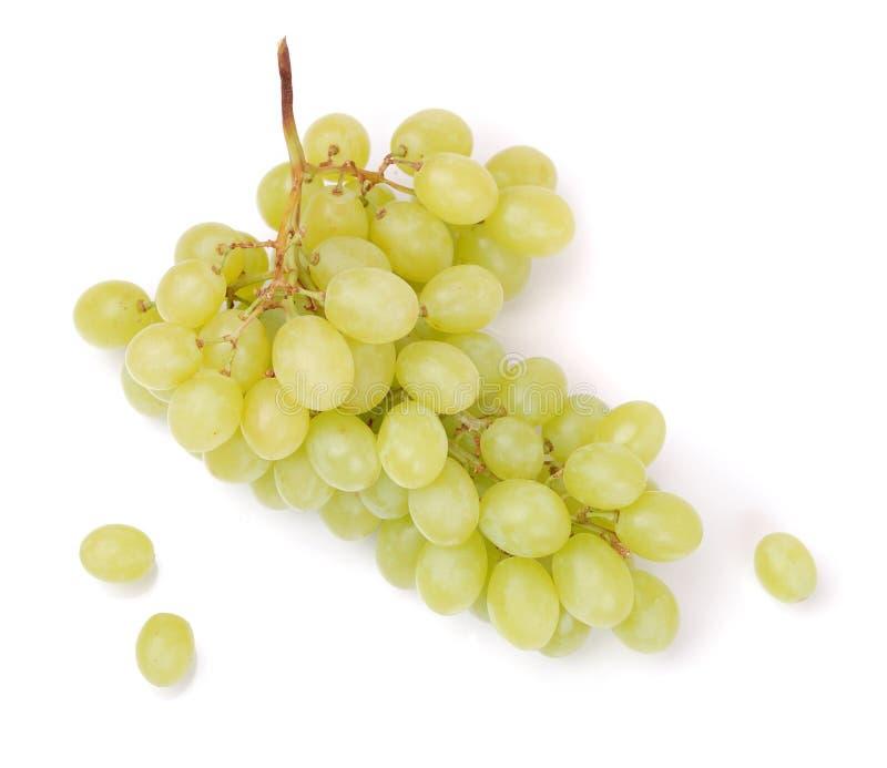 свежий зеленый цвет виноградин стоковые фотографии rf