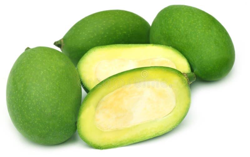 Свежий зеленый манго стоковая фотография rf