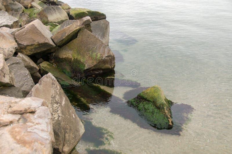 Свежий зеленый океан стоковое фото rf