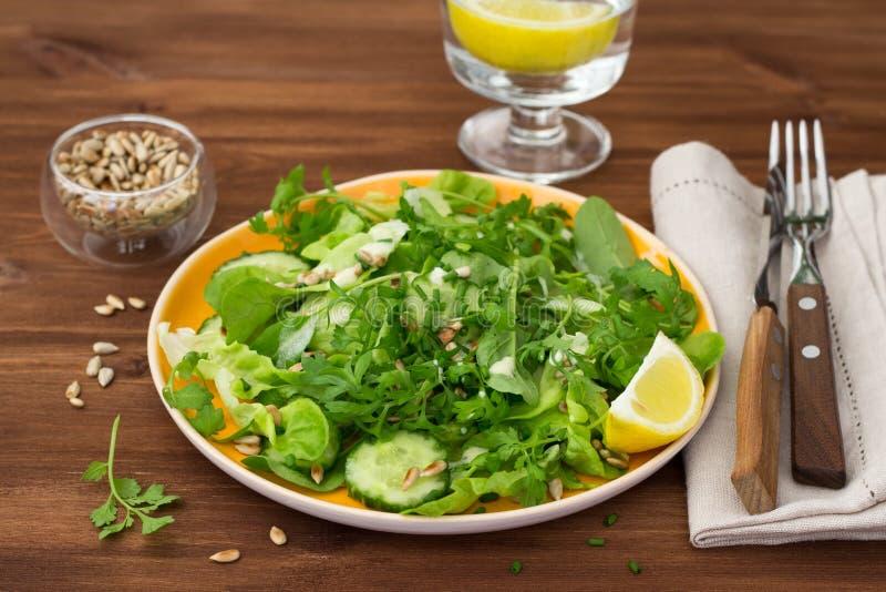 Свежий зеленый салат с различными салатом, огурцом и семенами подсолнуха стоковое фото rf