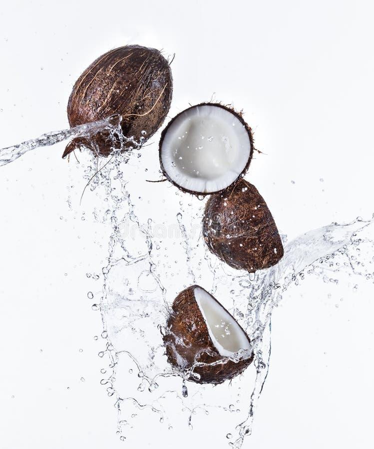 Свежий кокос с выплеском воды стоковое изображение
