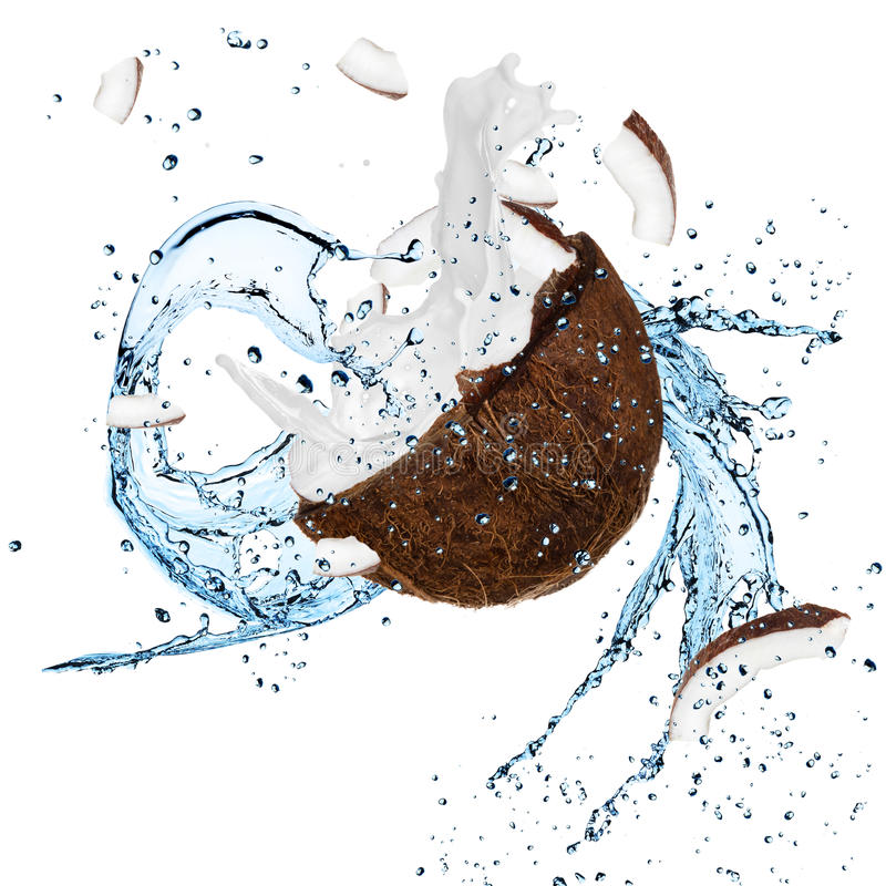 Свежий кокос с выплеском воды стоковое изображение rf