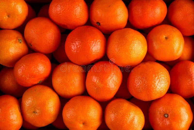 Свежий конец вверх по предпосылке апельсинов Tangerines мандарина стоковое фото rf