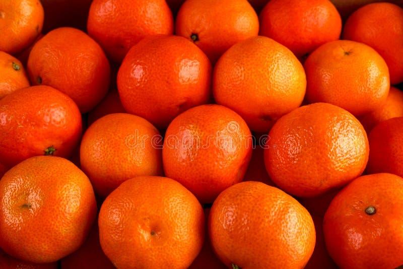 Свежий конец вверх по предпосылке апельсинов Tangerines мандарина стоковая фотография rf