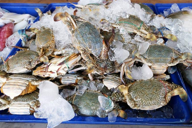 Свежий краб в рынке морепродуктов стоковое изображение