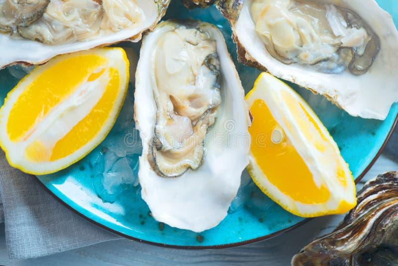 Свежий крупный план устриц на голубой плите, служил таблица с устрицами, лимоном и льдом море еды здоровое Обедающий устрицы в ре стоковые изображения rf