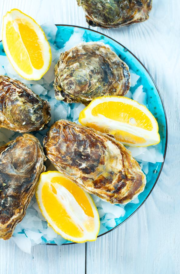Свежий крупный план устриц на голубой плите, служил таблица с устрицами, лимоном и льдом море еды здоровое Обедающий устрицы в ре стоковое изображение rf