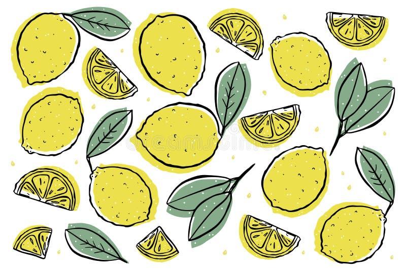 Свежий лимон изолированный на белизне иллюстрация штока