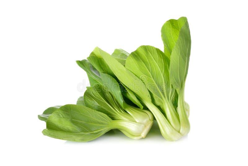 Свежий младенец Bok choy & x28; Китайское cabbage& x29; на белой предпосылке стоковая фотография rf