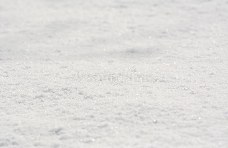 Свежий нетронутый снег стоковая фотография rf
