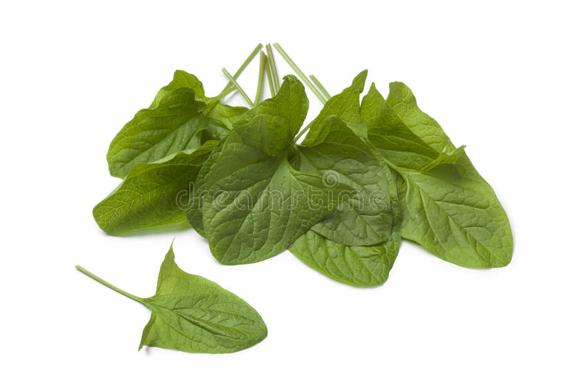 Свежий овощ Хорош-Корол-Генри стоковая фотография rf