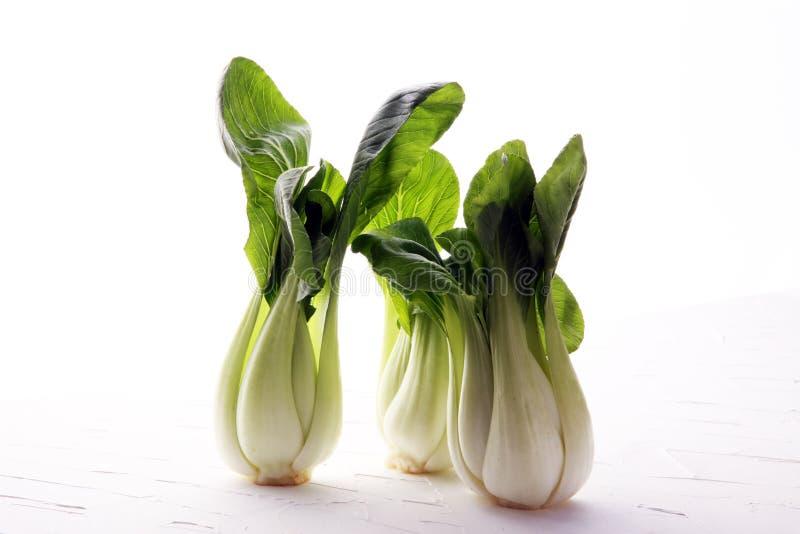 Свежий овощ Bok choy на белой предпосылке стоковая фотография rf