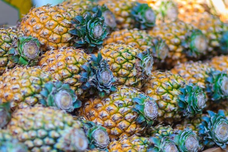 Свежий органический ананас Phulae для продажи на рынке плодоовощ _ стоковые фотографии rf